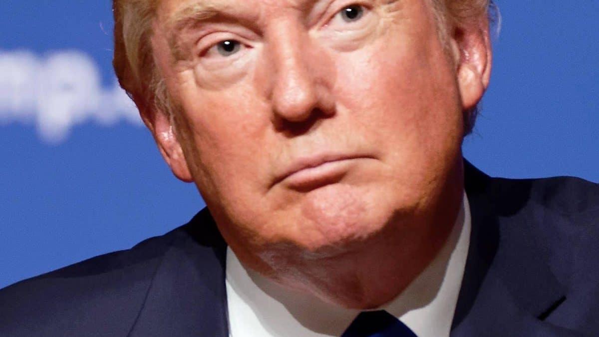 Donal Trump: 2019 Most Popular